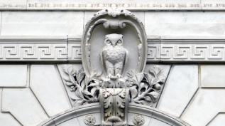 Athenas owl BOCP1120275